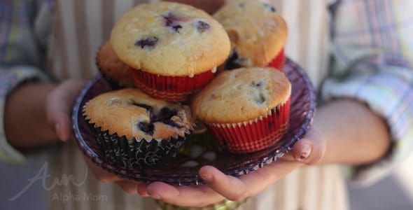Greek Yogurt Blueberry Lemon Muffins Recipe (breakfast on the go) by Brenda Ponnay for Alphamom.com