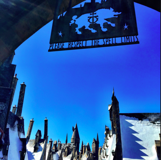 What to Expect at The Wizarding World of Harry Potter: Hogsmeade at Islands of Adventure