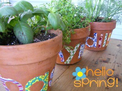 Celebrate the Vernal Equinox with a Spring Herb Garden by Ellen Luckett Baker for Alphamom.com