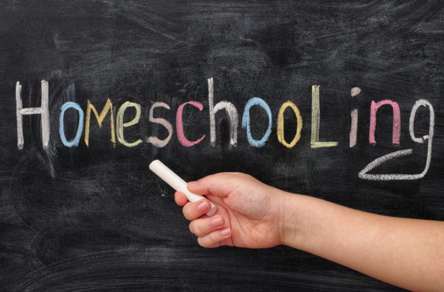 how does homeschooling work I want to home school my kids, but i do not know anything how does homeschooling works i would like to know some information.
