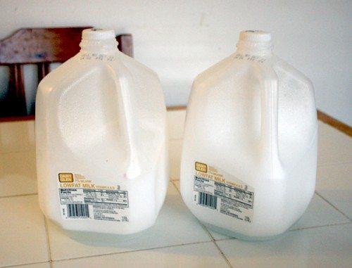Two empty plastic milk cartons