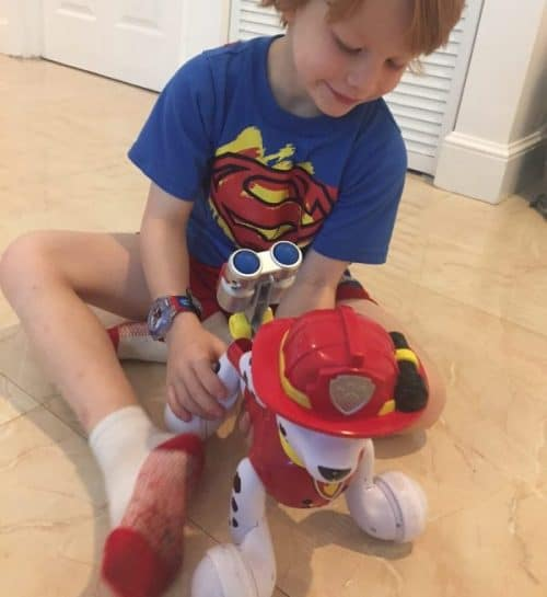 Paw Patrol Zoomer Marshall Review: why we think it's worthy of its Hot Toy List status.