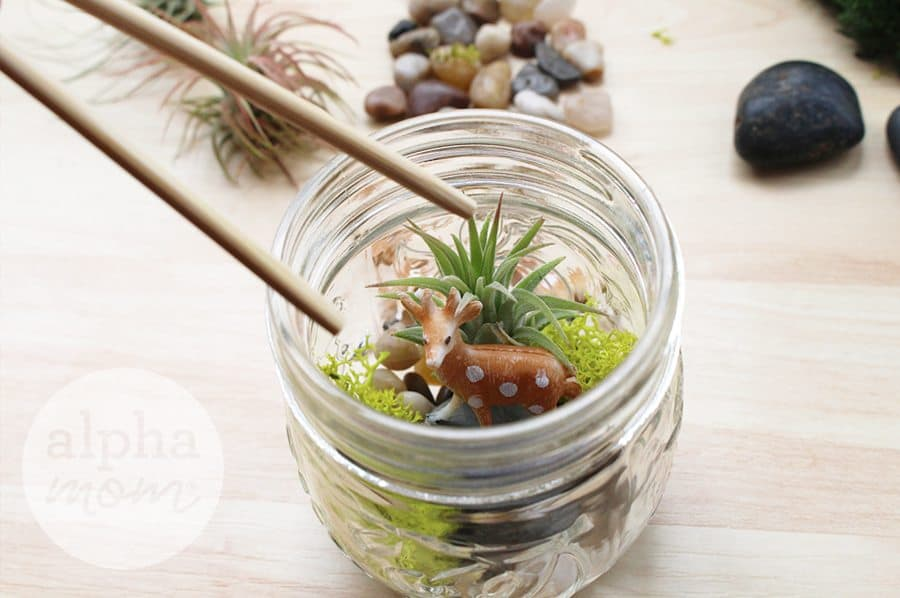 Holiday Teacher Appreciation Gift: Terrariums with Adorable Gift Tags (FREE and for download) by Brenda Ponnay for Alphamom.com (placement)