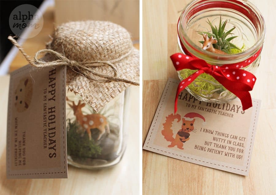Holiday Teacher Appreciation Gift: Terrariums with Adorable Gift Tag (FREE and for download) by Brenda Ponnay for Alphamom.com