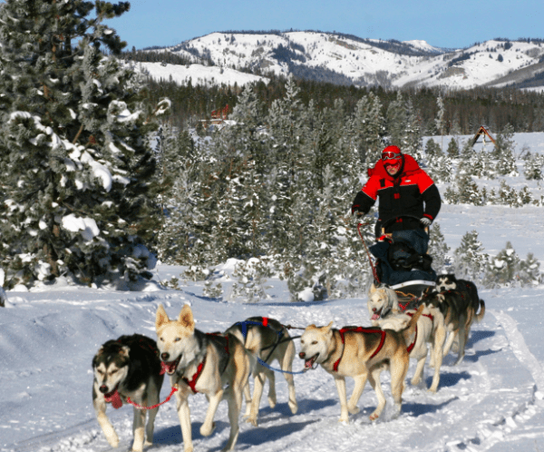 Snow Mountain Ranch in Winter Park, Colorado (dog sledding)