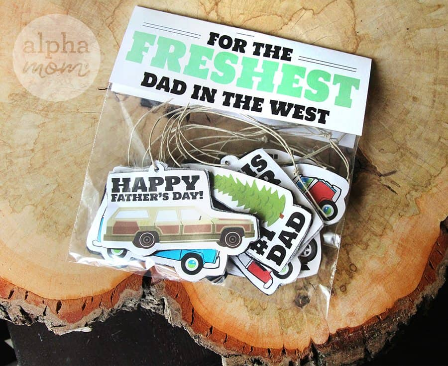 DIY Air Fresheners for Father's Day (freshest dad) by Brenda Ponnay for Alphamom.com