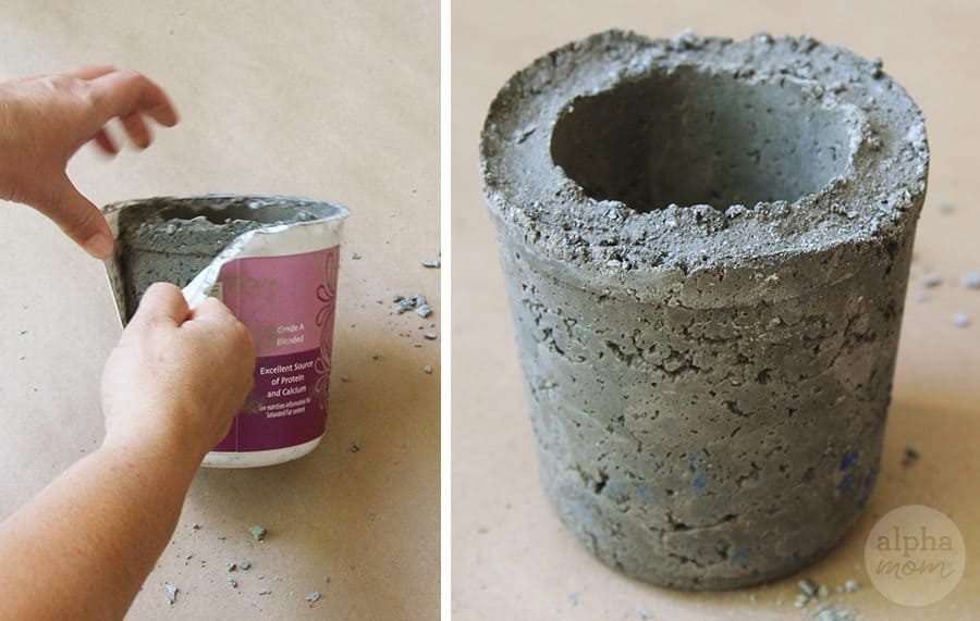 Summer Gardening: Cement Planter DIY (cement curing) by Brenda Ponnay for Alphamom.com