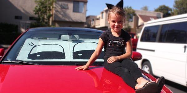 DIY Car Eyes! (window sun protector) by Brenda Ponnay for Alphamom.com