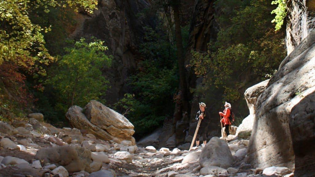 guided hiking at Ponderosa Resort