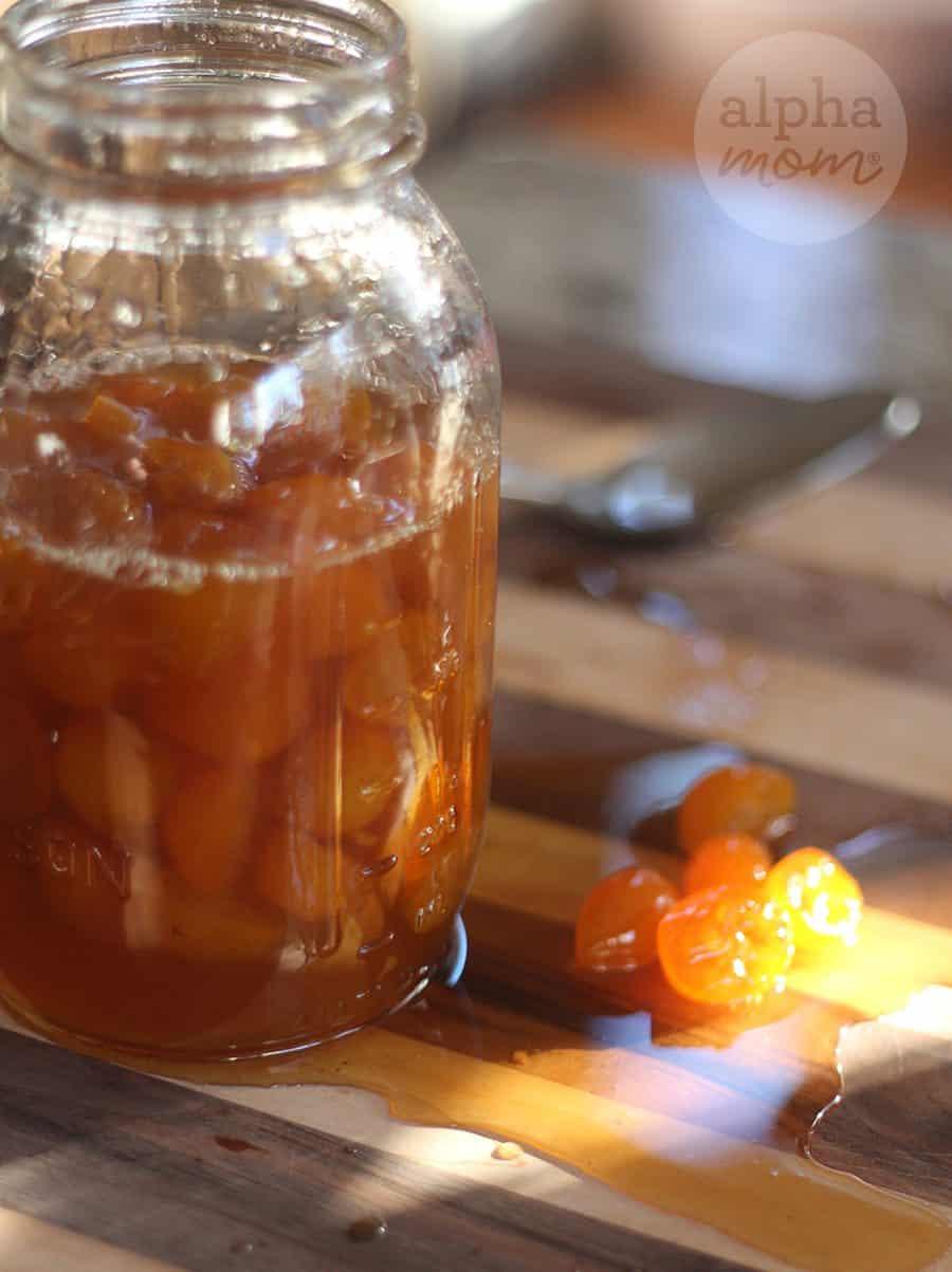 Candied Kumquat Citrus Cake Recipe (how to make candied kumquats) by Brenda Ponnay for Alphamom.com