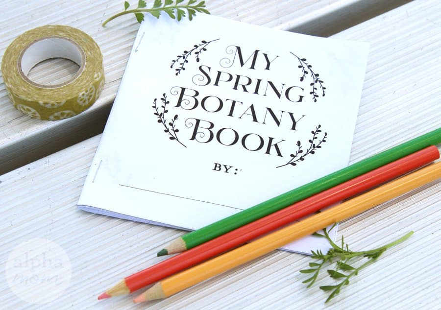 Spring botany book printable