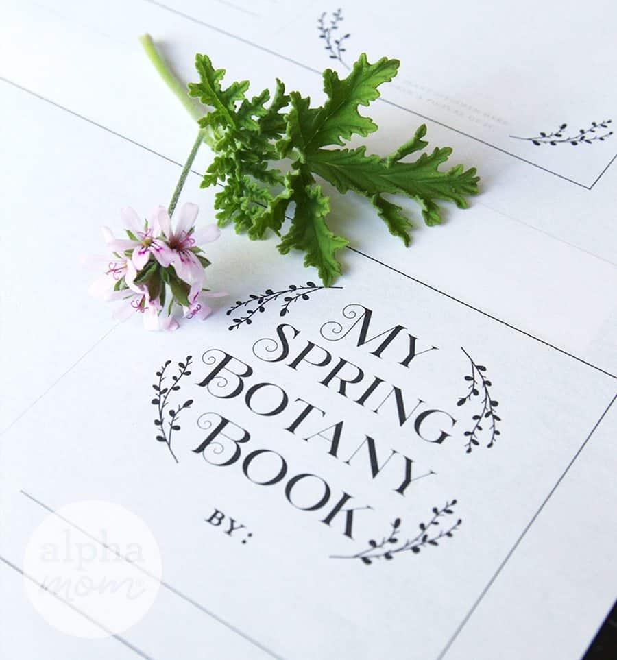 My Spring Botany Book printed sheet
