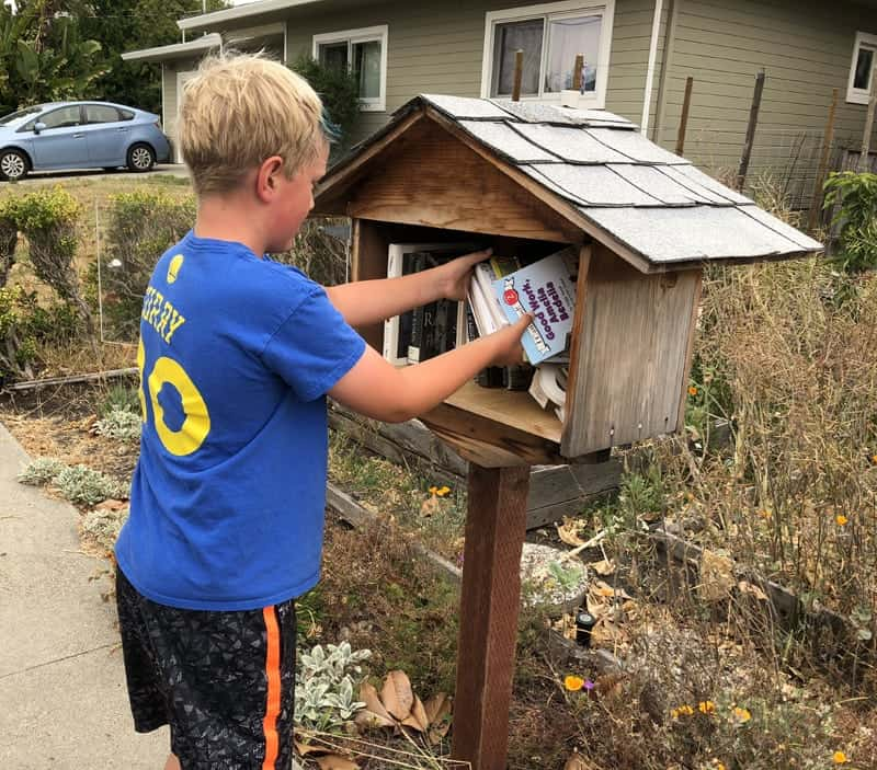 adding books to Little Free Library