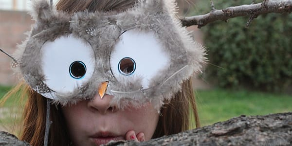 Owl Mask DIY