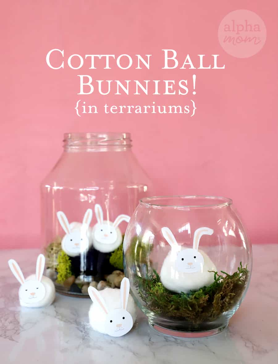 Cotton Ball Bunnies in two different Terrarium jars
