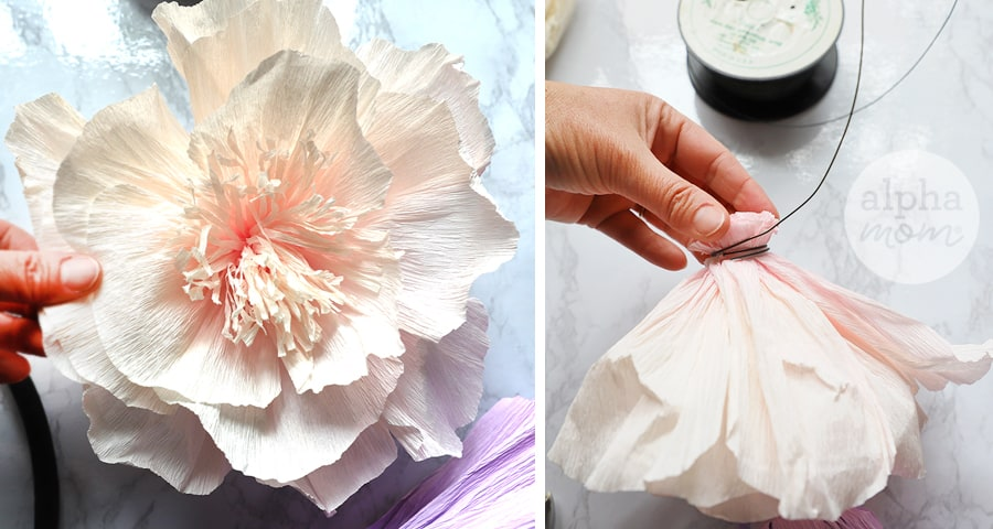 handling light pink tissue flower and adding wire ribbon
