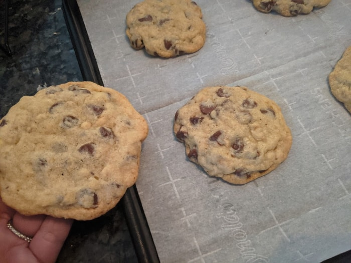 chocolate chip cookies on baking sheet fresh out of the oven