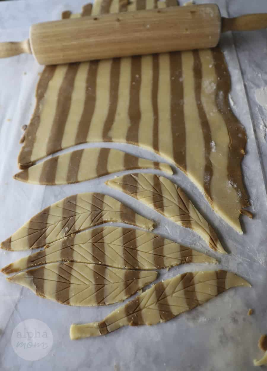 close-up photo of rolled-out cookie dough and cut into scored feather-shaped cookies