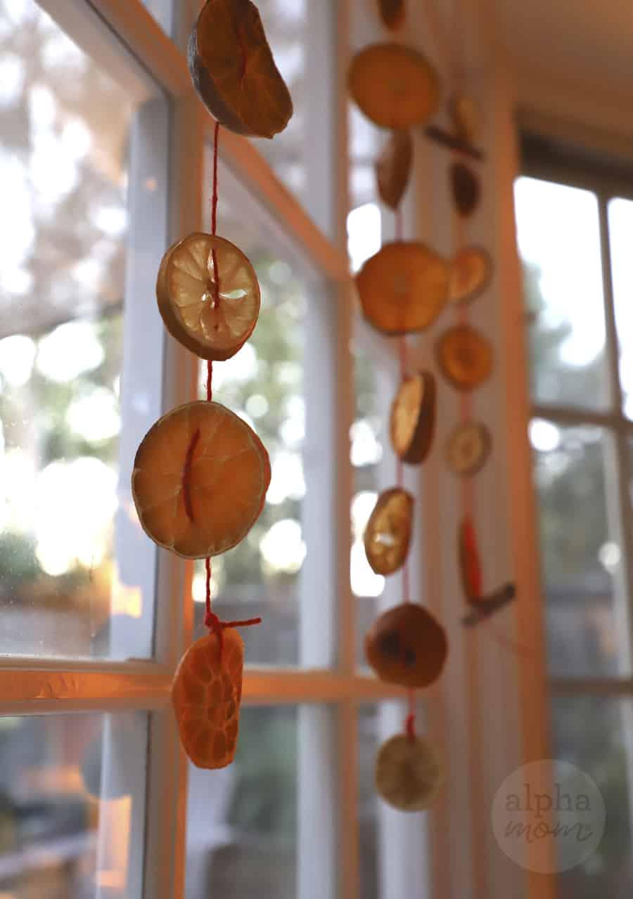 three hanging sliced citrus garlands on window