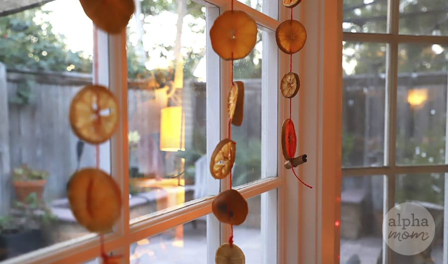 Cirtus Sun Catchers dangling in front of window as a garland for decoration